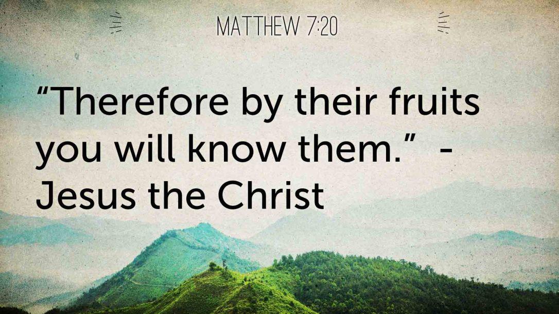 bytheirfruit