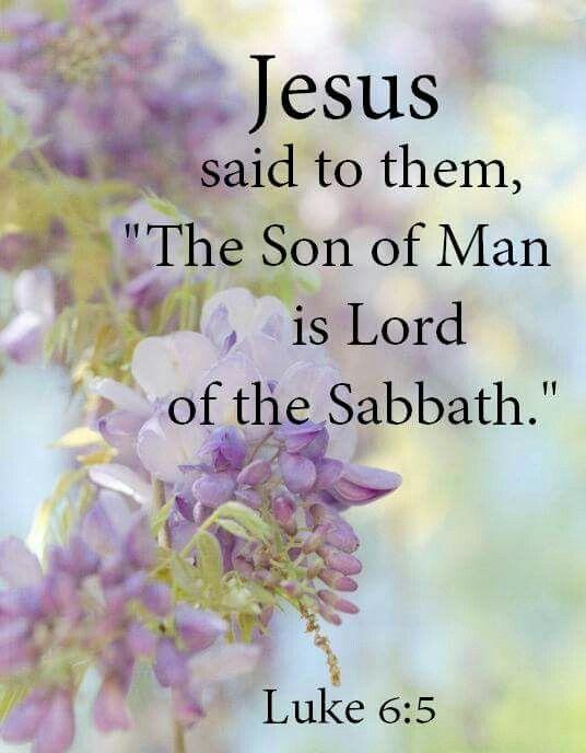 Luke 6:5