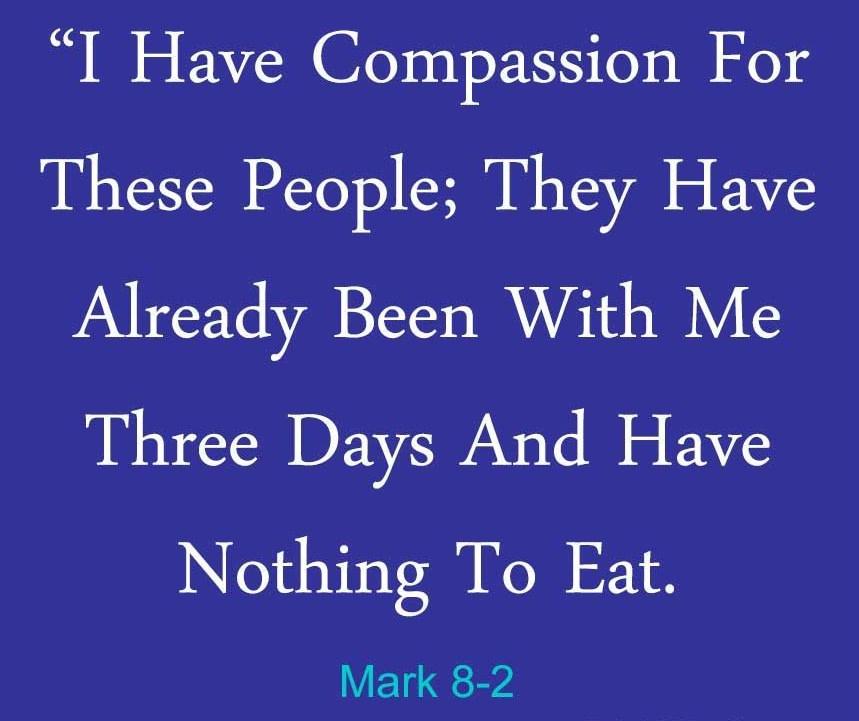 Mark-8-2