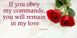 Kuvahaun tulos haulle John 15:10