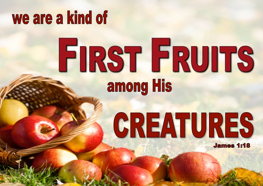 James 1-18 First Fruit Of God's Creation red