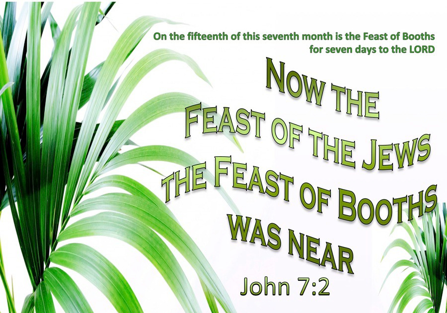 John 7-2 The Feast Of The Jews -Booths Was Near green