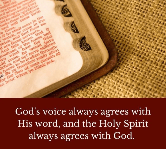 Holy Spirit and Bible
